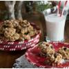 RAW sausainiai su spanguolėmis